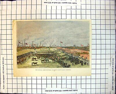 £13 • Buy Old Royal Agricultural Society'S Show-Yard Preston Horses People 160J