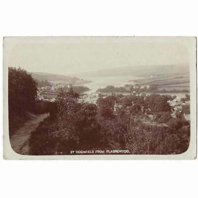 £5.50 • Buy ST DOGMAELS From Plas Newydd, Pembrokeshire RP Postcard By Excelsior Unused