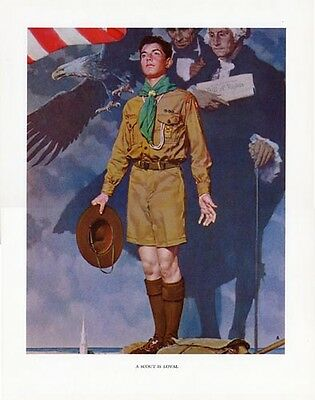 $ CDN46.66 • Buy Norman Rockwell Boy Scout Print A SCOUT IS LOYAL 1942
