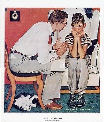 $ CDN18.79 • Buy Norman Rockwell Father And Son Print THE FACTS OF LIFE