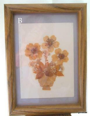 Framed Pressed Dried Flowers Spring Bouquet 5.5 X 7.5 Completed Size B • 16.00$