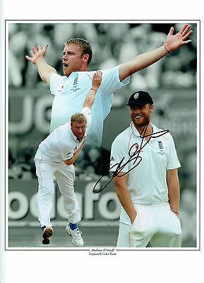 Andrew FLINTOFF Signed Autograph 16x12 Montage Photo AFTAL England Cricket • 149.99£