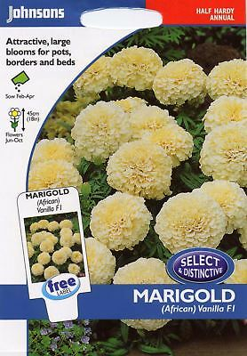 Johnsons Pictorial Pack - Flower - Marigold (African) Vanilla F1 - 20 Seeds • 4.20£