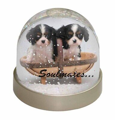 £9.98 • Buy King Charles Puppies 'Soulmates' Photo Snow Globe Waterball Stocking , SOUL-55GL