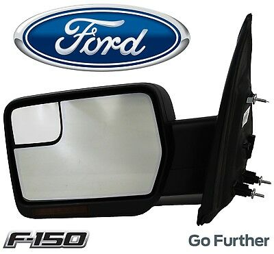 $579.82 • Buy For Ford F150 Driver Left Power Fold Heated Signal Puddle Mirror Assy Chrome OES