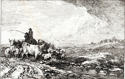 CATTLE HERDING 1796 Samuel Howitt ANTIQUE ENGRAVING  • 39.50£