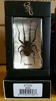$12.99 • Buy Spider Real Insect PAPERWEIGHT Entomology Bug Taxidermy Resin MB91 Stocking Stuf