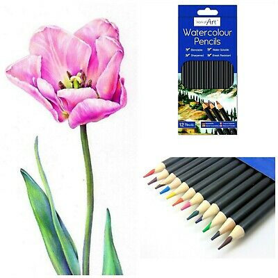 £3.15 • Buy 12 Watercolour Artist Pencils For Drawing Painting Sketching Art Water Colour UK