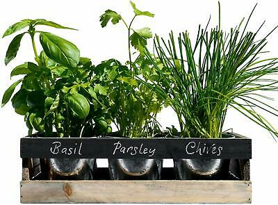 Viridescent Indoor Herb Garden Kit - Kitchen Wooden Windowsill Planter Box With • 17.96£