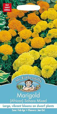 Mr Fothergills - Pictorial Packet Flower African Marigold Sahara Mixed 60 Seeds • 2.40£
