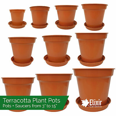 Plastic Glossy Terracotta Plant Pots & Saucers | Optional Pot And Saucer Set • 7.99£
