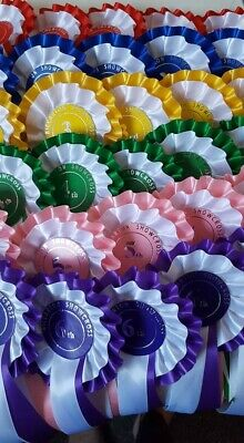 £7.80 • Buy One Set Of Six Show Rosettes,1st To 6th, Horse Pony Dog Cat Bird Free Post Cheap