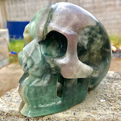 $26 • Buy Natural Fluorite Carved Healing Crystal Carving Skull Super Realistic Healing