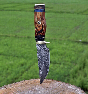 $21.99 • Buy HAND FORGED DAMASCUS STEEL Hunting Knife W/ Wood & Brass Guard Handle