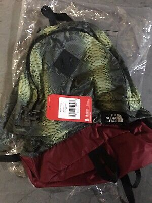 $ CDN204.57 • Buy Supreme SS18 The North Face Snakeskin Day Pack Green Backpack IN HAND (SOLD OUT)