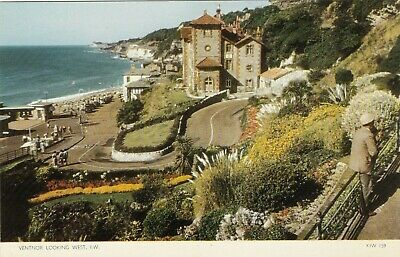 VENTNOR LOOKING WEST, ISLE OF WIGHT : POSTCARD (1950s) • 4.99£