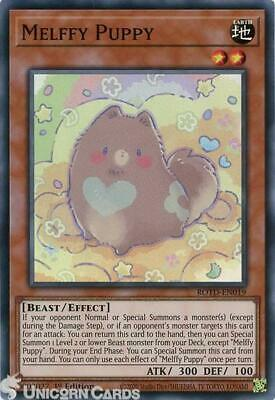 ROTD-EN019 Melffy Puppy Super Rare 1st Edition Mint YuGiOh Card • 1.32£