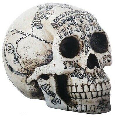 $ CDN39.95 • Buy Skeleton Ouija Board Symbols Skull Head Figurine Halloween Decoration Prop