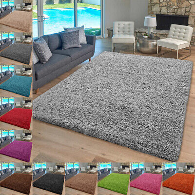 Thick Large Shaggy Rugs Non Slip Hallway Runner Rug Bedroom Living Room Carpet  • 16.99£