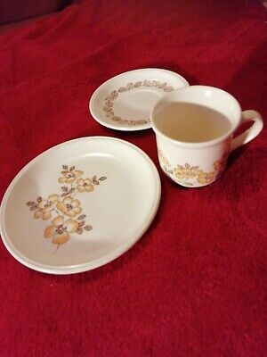 £6 • Buy Biltons Cream And Yellow Floral Tea Cup And Saucer And Tea Plate