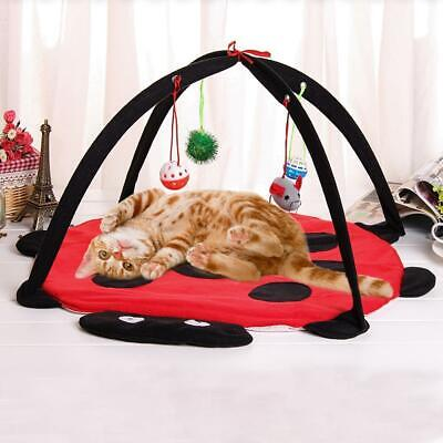 2018 Cat Bed Pet Toy Tree Furniture House Post Scratcher Condo Kitten Play L4D9 • 6.69£
