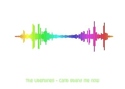 The Libertines - Can't Stand Me Now - Rainbow Soundwave Poster - A4 Size • 7.99£