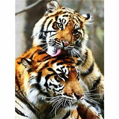AU10.96 • Buy Tiger Animals DIY 5D Diamond Painting Kits Full Drill Art Embroidery Decors Gift