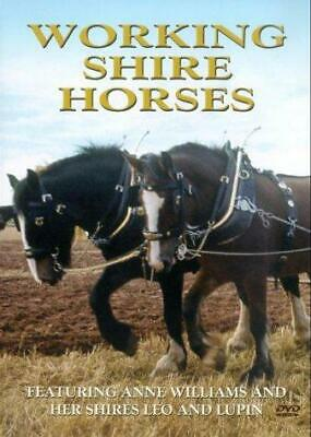 Working Shire Horses [DVD], Very Good DVD, Anne Williams, • 3.79£