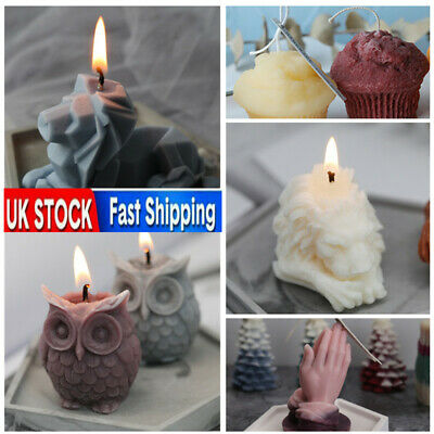 Lion Stencil Candle Mold Silicone Candle Making DIY Handmade Mould Wax Soap Mold • 5.76£