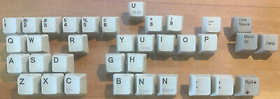 IBM Model M Key Caps With Integrated Stem • 1£