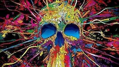 £23.99 • Buy Skull Awesome Multi Colour Canvas Print Wall Art Picture Size 20x30Inch 18mm