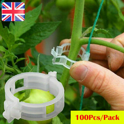 £3.89 • Buy 50-100Pcs Tomato And Veggie Garden Plant Support Clips For Trellis Twine Greenho