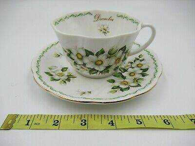 £14.99 • Buy Queen's Rosina China December Christmas Rose Tea Cup And Saucer [c795]