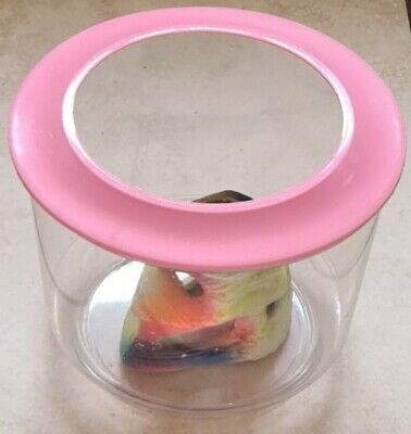 £4.99 • Buy Plastic Goldfish Bowl With Pink Lid & Accessory