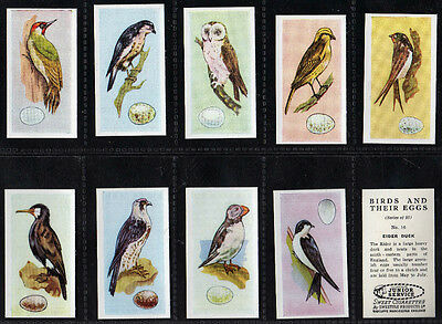£4.99 • Buy Cigarette Cards British Birds And Their Eggs 1954 Mint Set