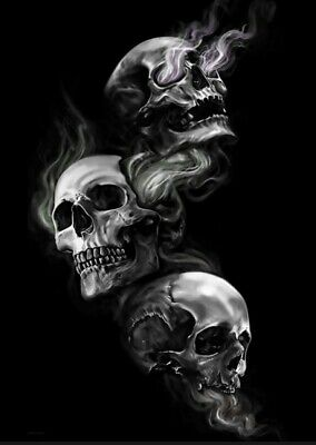 £23.99 • Buy Gothic Smoking Skulls Canvas Print Wall Art Picture Size 16x20 Inch 18mm