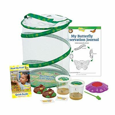 £42.12 • Buy Insect Lore Butterfly Garden Original Habitat And Two Live Cups Of Caterpilla...