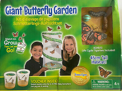 £20 • Buy Insect Lore Giant Live Butterfly Garden 45cm Habitat & Redemption Certificate