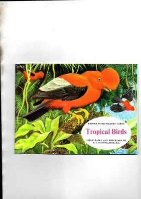 £6.40 • Buy Tropical Birds Unused Brooke Bond Album With Glossy Front Mint 1974 Reissue