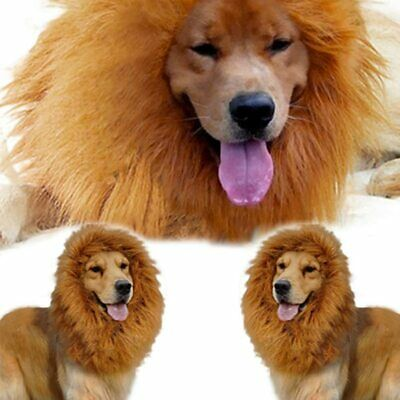 £5.59 • Buy Halloween Pet Clothes Fancy Dress Up Costume Cat Lion Mane Wig For Large Dogs