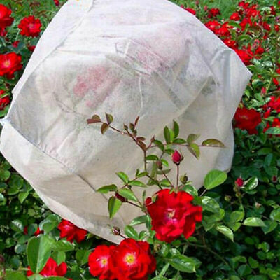£9.98 • Buy 2mx10m Garden Fleece Frost Protection Wind Cover Cold Plant 17GSM Horticultural