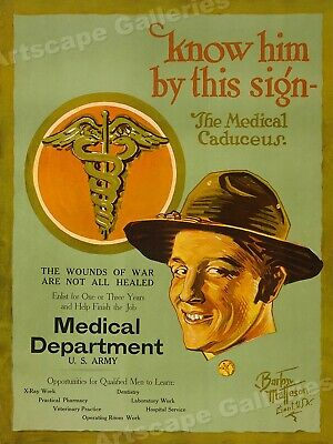 $19.95 • Buy  The Medical Caduceus  1919 WW1 US Army Medical Poster - 24x32