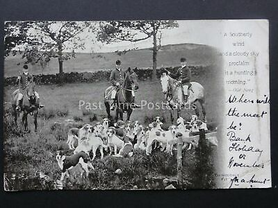 £7 • Buy HUNTING & HOUNDS SCENE Old Song  A SOUTHERLY WIND & A CLOUDY SKY.....  C1903