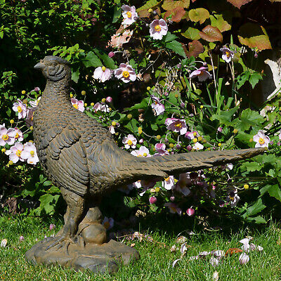 £76.95 • Buy Lovely Standing  Pheasant  Garden Ornament, Weathered Rust Effect, Xst/913