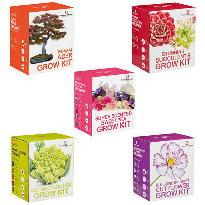Seed Grow Kit 16 Options Grow Your Own Plants Veg Fruit From Seeds Easy Kits T&M • 14.99£