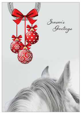 £6.99 • Buy Equestrian Christmas Cards - Pack Of 10 - One Design