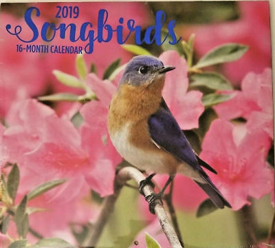 $6.99 • Buy 2019 Wall Calendar - Songbirds -16 Month-12x22 Inches