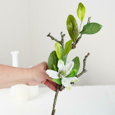 $12.76 • Buy 4 Beautiful Creamy Magnolia Picks With Green Leaves For Home Decor
