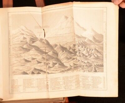 £195 • Buy C1840 2Vol Oliver Goldsmith A History Of The Earth And Animated Nature Illus