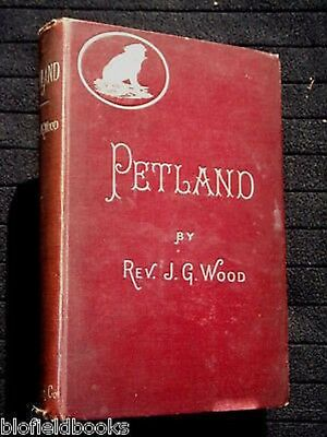 £29.99 • Buy Petland Revisited; Domestic Pets By The Rev J G Wood (1890) Dogs, Cats, Animals